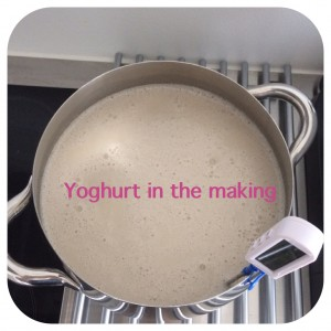 Metode til at lave sund yoghurt