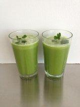 Grøntsagsjuice. Sådan juicer du tørre grøntsager og urter.