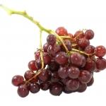 Røde druer