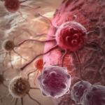 kræft og kost