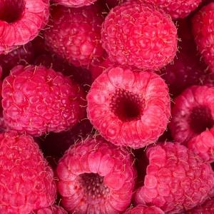 hindbær1